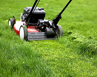 Lawn Care Rental Properties